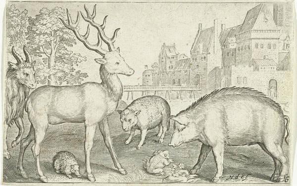 Hoof Drawing - Hart, Hedgehog, Sheep, Pig And Frog, Nicolaes De Bruyn by Nicolaes De Bruyn