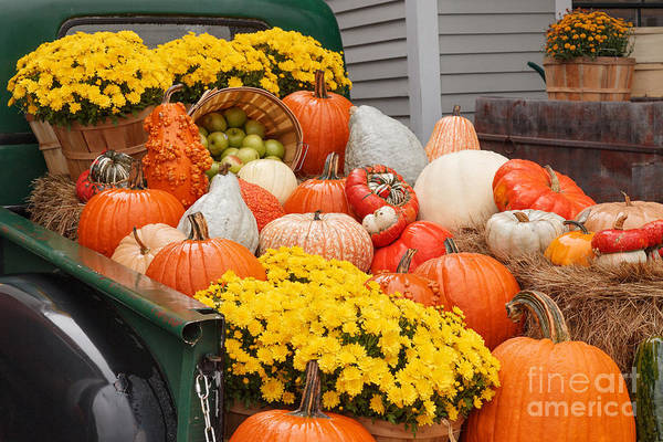 Photograph - Harvest Display At The Vermont Country Store by Charles Kozierok