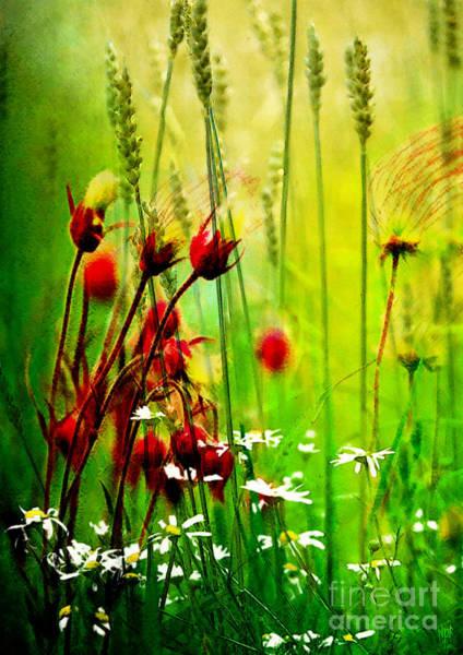Wild Poppies Digital Art - Harvest Meadow by Neil Finnemore