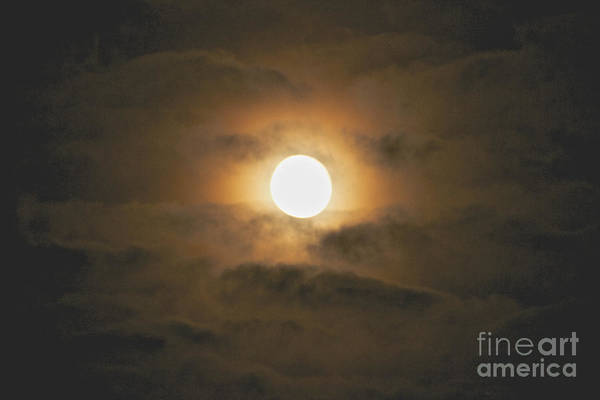 Photograph - Harvest Moon In The Clouds by William Norton