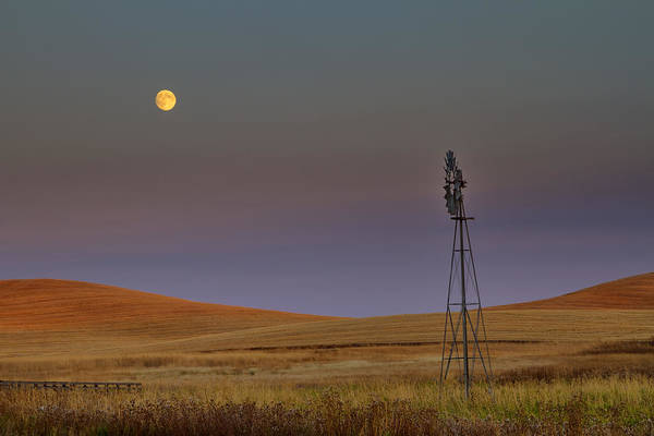 Photograph - Harvest Moon by Mark Kiver