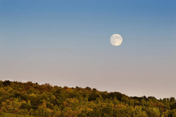 Photograph - Harvest Moon by Christina Rollo