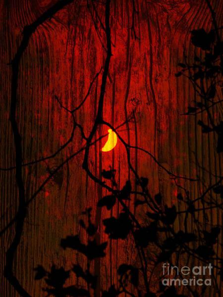 Silhoutte Photograph - Harvest Moon by Robert Ball