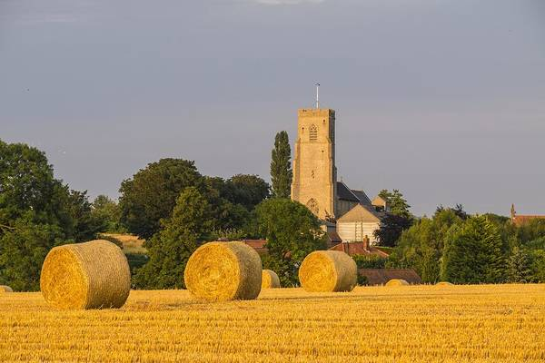Harvest Scenes In The East Of England Art Print by GKS Images