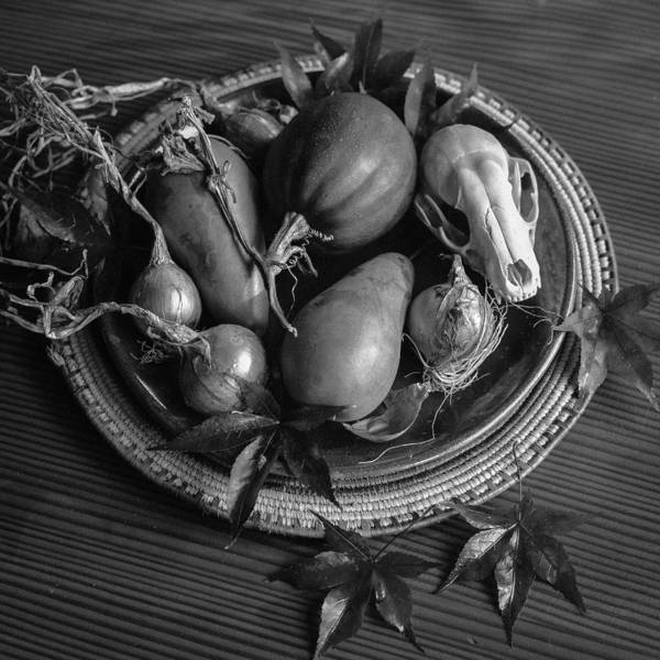 Acorn Squash Photograph - Harvest Still Life In Black And White by Ronda Broatch