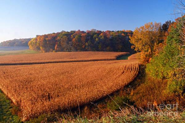 Photograph - Harvest Time by Larry Ricker
