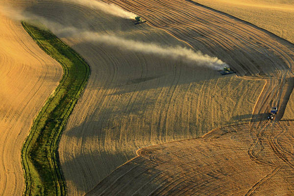 Wall Art - Photograph - Harvest Time by Latah Trail Foundation