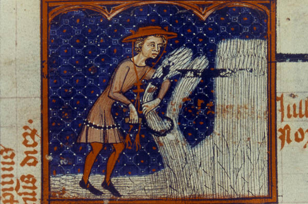 Sickle Painting - Harvesting, 14th Century by Granger