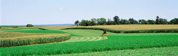 Frederick County Wall Art - Photograph - Harvesting, Farm, Frederick County by Panoramic Images