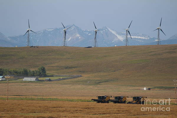 Photograph - Harvesting Wind And Grain by Ann E Robson