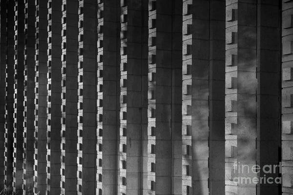 Photograph - Harvey Mudd College Columns by University Icons