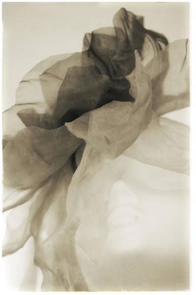 Photograph - Fashion Art - Big Bow Hat By Jo Ann Tomaselli by Jo Ann Tomaselli