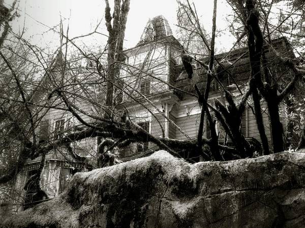 Photograph - Haunted Enchantment by Lora Fisher