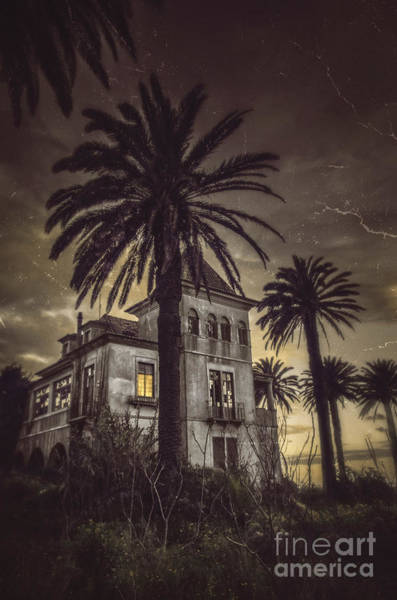 Palm House Photograph - Haunted House by Carlos Caetano