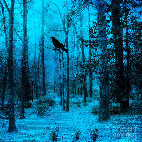 Raven Digital Art - Haunting Dark Blue Surreal Woodlands With Crow  by Kathy Fornal