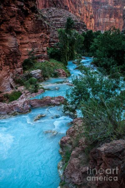 Photograph - Havasu Creek by Jim McCain