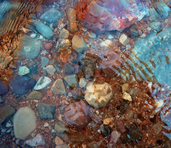 Photograph - Havasu Water by Britt Runyon