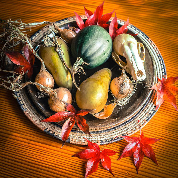 Acorn Squash Photograph - Harvest Still Life by Ronda Broatch