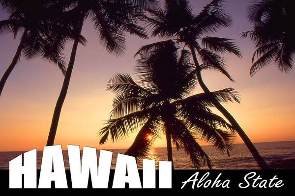 Photograph - Hawaii Aloha State Poster by Peter Potter