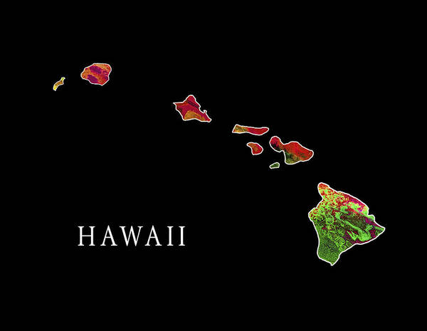 Hawaii State Art Print