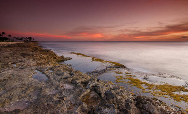 Wall Art - Photograph - Hawaii Sunset Paradise  by Tin Lung Chao