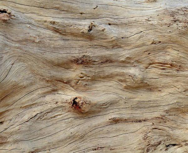 Wall Art - Photograph - Hawaiian Beach Wood Texture by Mr Doomits