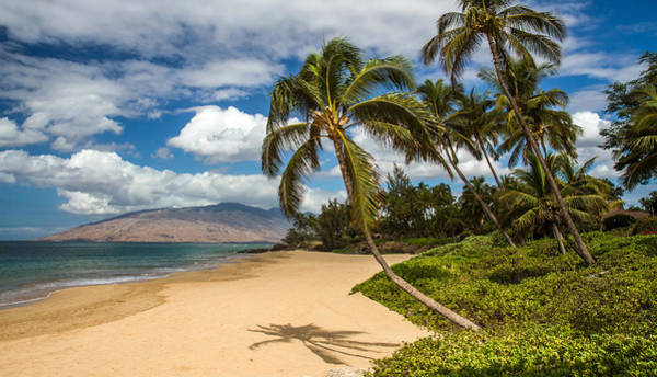 Photograph - Hawaiian Tropical Paradise by Pierre Leclerc Photography