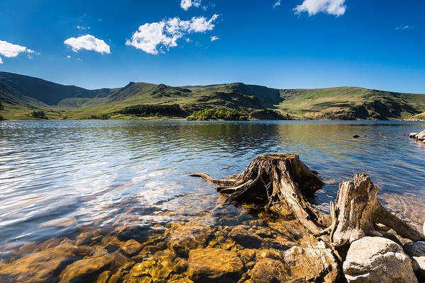 Haweswater Wall Art - Photograph - Haweswater Resevoir With Old Tree Stump by David Head