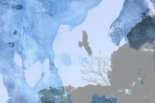 Hawk In Flight 1 Art Print