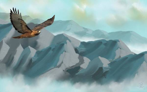 Hawk In Flight Art Print