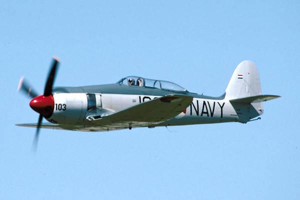 Hawker Sea Fury Photograph - Hawker Sea Fury Nx51sf Flying Camarillo August 23 2003 by Brian Lockett