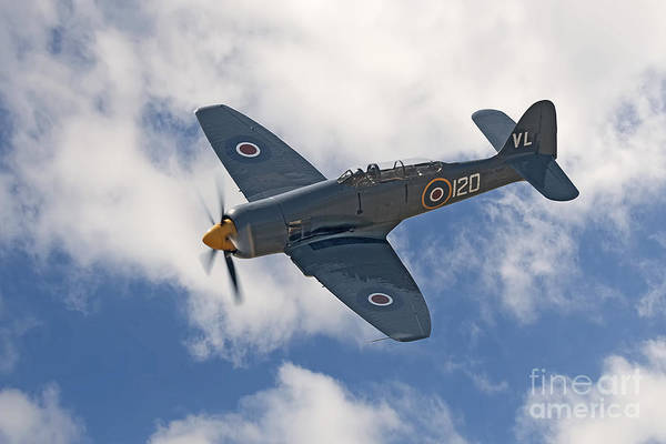 Hawker Sea Fury Photograph - Hawker Sea Fury by Steve H Clark Photography
