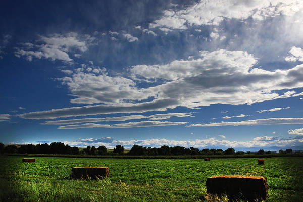 Photograph - Hay Bales by Shane Bechler