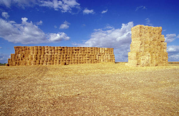 Hay Bale Wall Art - Photograph - Hay Bales by Chris Sattlberger/science Photo Library