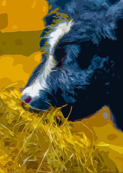 Dairy Barn Digital Art - Hay Day 2 by Brian Stevens