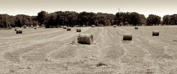 Photograph - Hay Field by Ricardo J Ruiz de Porras