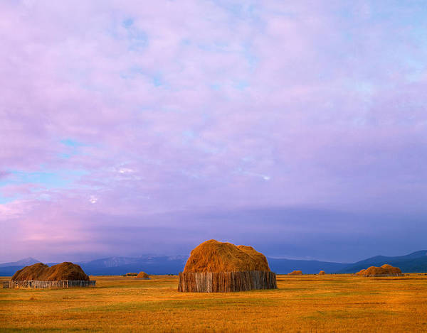 Montana Photograph - Hay Stacks by Leland D Howard