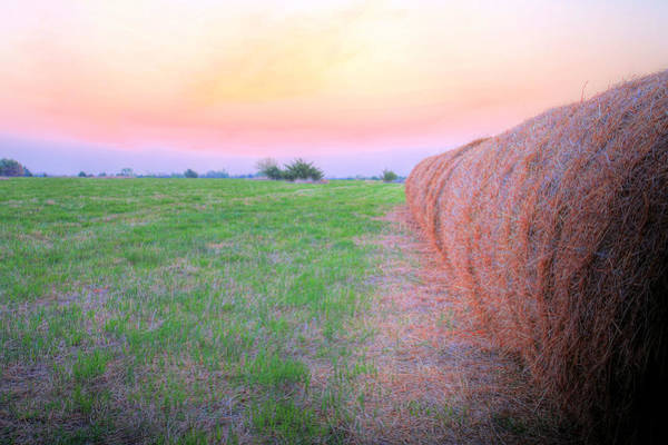 Hey Photograph - Hay There by JC Findley