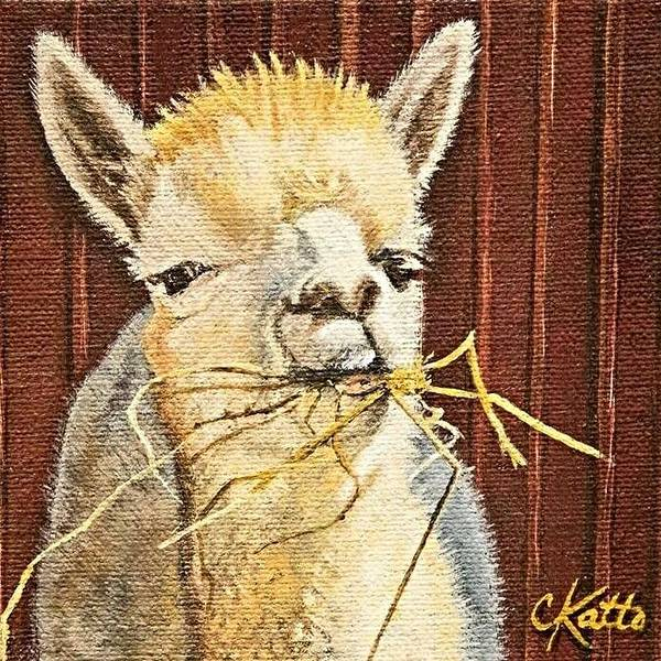 Alpaca Painting - Hay Y'all by Cireena Katto
