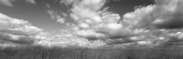 Windswept Photograph - Hayden Prairie, Iowa, Usa by Panoramic Images