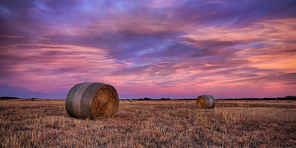 Harvesting Wall Art - Photograph - Hayseed by Thomas Zimmerman