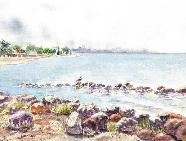 Area Painting - Hazy Morning At Crab Cove In Alameda California by Irina Sztukowski