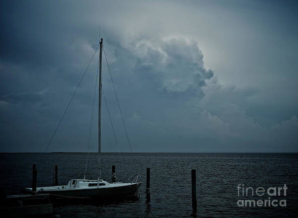 Photograph - Head In The Clouds by Mark Miller