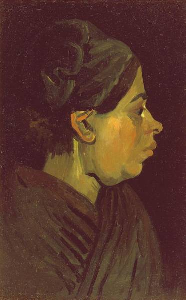 Painter Photograph - Head Of A Peasant Woman, C.1884 Oil On Canvas On Wood Panel by Vincent van Gogh