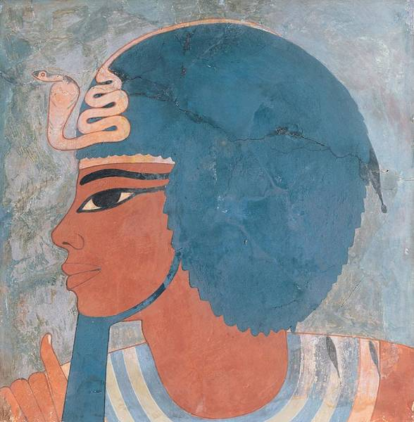 Wall Art - Painting - Head Of Amenophis IIi From The Tomb Of Onsou, 18th Dynasty by Egyptian 18th Dynasty