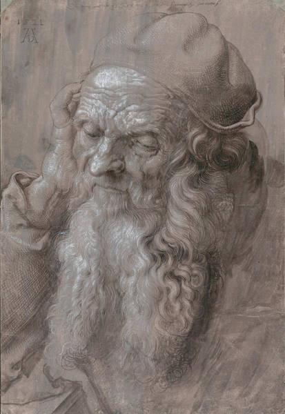 German Renaissance Drawing - Head Of An Old Man by Albrecht Durer