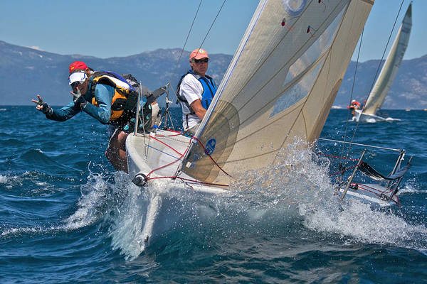 Photograph - Head On Lake Tahoe Regatta by Steven Lapkin
