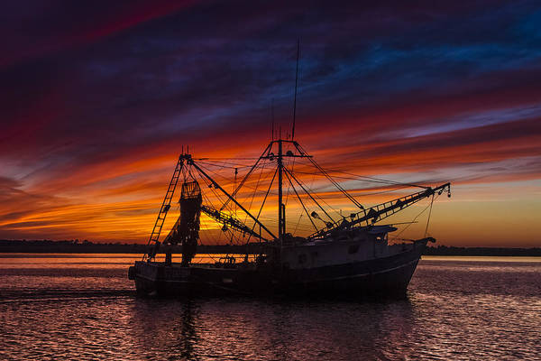 Tug Boat Photograph - Heading Home by Debra and Dave Vanderlaan
