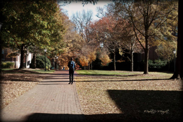 Photograph - Heading To Class - Davidson College by Paulette B Wright