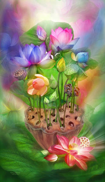 Mixed Media - Healing Lotus - Chakras by Carol Cavalaris